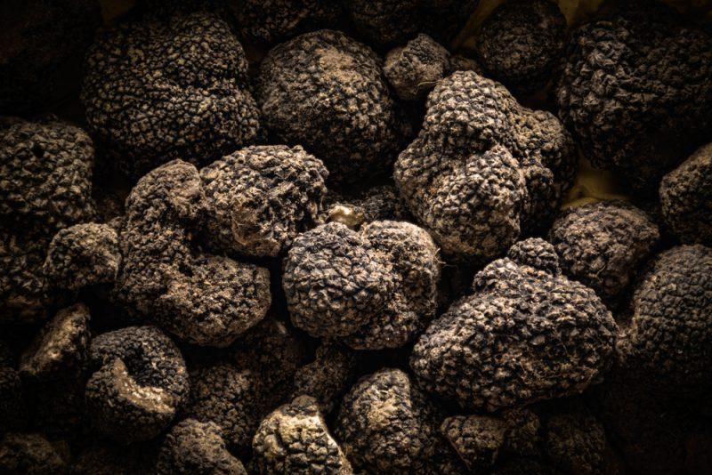 black truffle Umbria Travel Italy