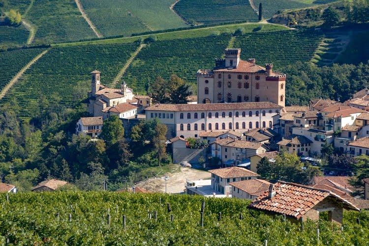 Travel wine Italy Barolo