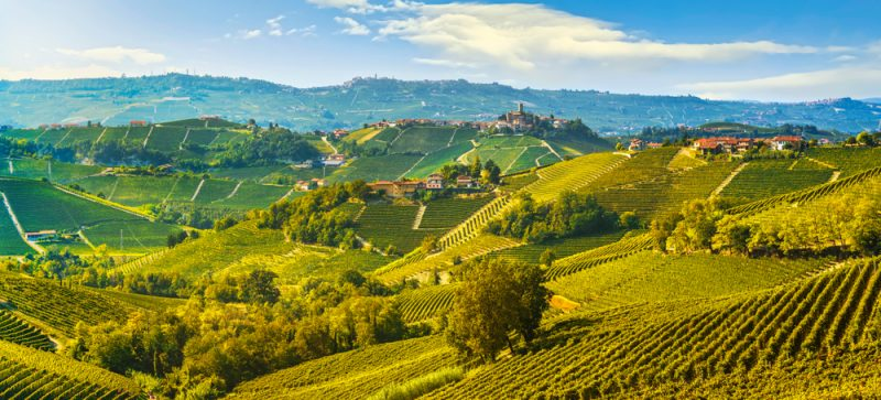 travel Langhe wineyards Italy