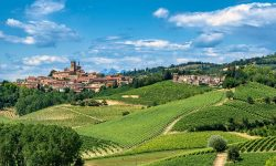 Monferrato Piedmont Wines Hills Italy
