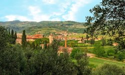 Valpolicella Hills Wine Vineyards Travel Italy