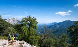 Wild Sardinia Travel Italy