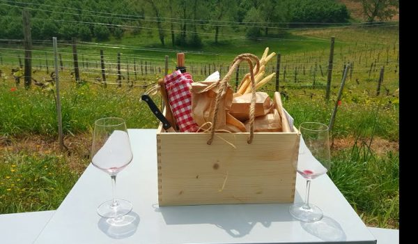 picnic langhe italy vineyards travel