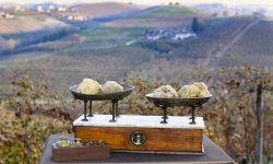travel Piedmont Langhe Italy